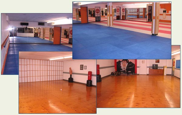 Japanese themed and matted area dojo and training facility of Mississauga Shotokan Karate Club.